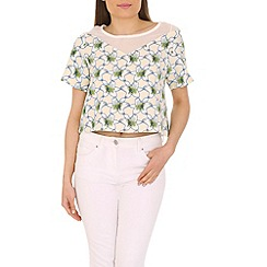 Cutie - Cream chiffon panel top