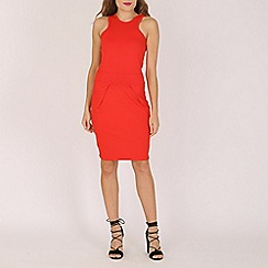 Indulgence - Red red skater dress