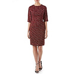 Poppy Lux - Maroon sharon leopard shift dress
