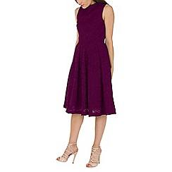 Jolie Moi - Navy Lace Bonded Midi Dress