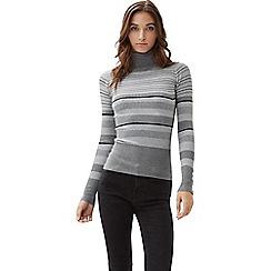 Jane Norman - Grey roll neck lurex stripe jumper