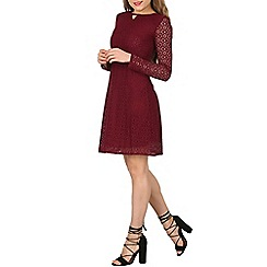 Tenki - Dark red full sleeve lace skater dress