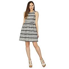 Apricot - Navy stripy skater dress