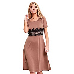 Be Jealous - Brown cap sleeves lace midi skater dress