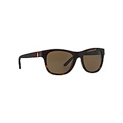 Polo Ralph Lauren - Brown square PH4091 sunglasses