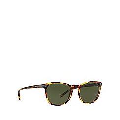 Polo Ralph Lauren - Brown phantos PH4107 sunglasses