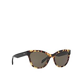 Prada - Havana PR21SS phantos sunglasses