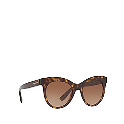 Dolce & Gabbana - Havana DG4311 oval sunglasses