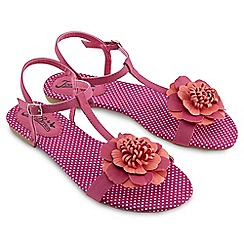 Joe Browns - Pink sunset boulevard sandals