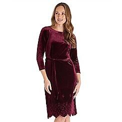 Joe Browns - Dark red embroidered velvet knee length dress