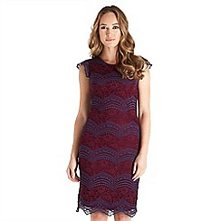 Joe Browns - Red lace cotton blend 'Luscious' knee length bodycon dress