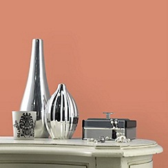Laurence Llewelyn-Bowen - Matt finish Space hopper paint