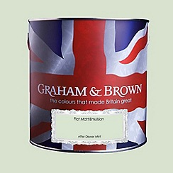Graham & Brown - Matt finish After dinner mint paint