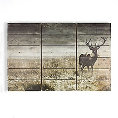 Graham & Brown - Green Highland Stag Print On Wood Wall Art