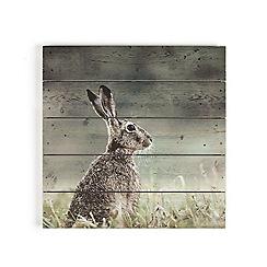 Graham & Brown - Brown Hare Printed On Wood