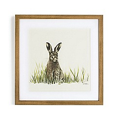 Graham & Brown - Brown Hand painted Countryside Hare Framed Print