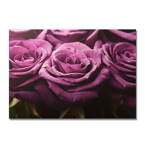Graham & Brown - Plum Roses row printed canvas wall art
