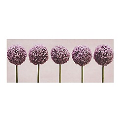 Graham & Brown - Printed canvas Row of alliums wall art