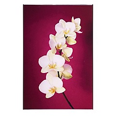 Graham & Brown - Lacquered Orchid fuchsia wall art