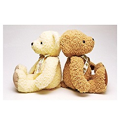 Graham & Brown - Printed canvas Teddies duo wall art