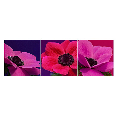 Graham & Brown - Pink Jewel Florals Wall Art