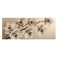 Graham & Brown - Beige Orchid Branch Wall Art