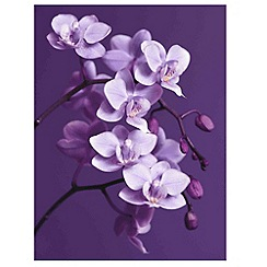 Graham & Brown - Purple Orchid Wall art