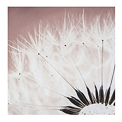 Graham & Brown - Delicate dandelion with glitter wall art