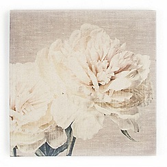 Graham & Brown - Beige Cream Petals Print On Fabric Wall art