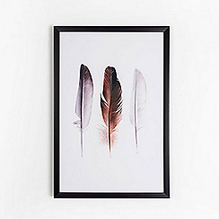 Graham & Brown - Bird Feather Nature Printed Trio Framed Print Wall Art