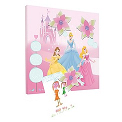 Disney - Princess Magnetic Canvas