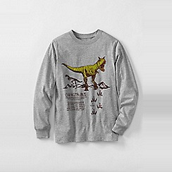 Lands' End - Grey boys' long sleeve graphic tee