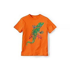 Lands' End - Boys' Orange graphic tee