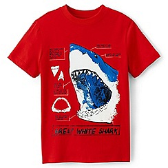 Lands' End - Boys' red graphic tee