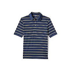 Lands' End - Blue striped supima polo