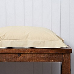 Christy - Gold '200 Plain Dye' fitted sheet