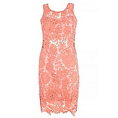 Quiz - Coral lace zip back dress