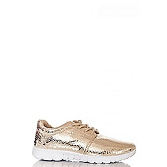 Quiz - Gold Snake Metallic Trainers