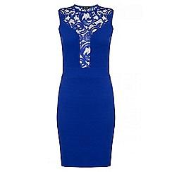 Quiz - Royal Blue Crepe Plunge Lace Neck Bodycon Dress