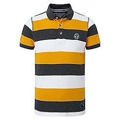Tog 24 - Boys' citrus dyson stripe polo shirt