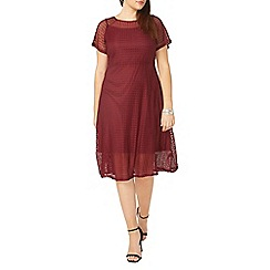 Evans - Red lace midi dress