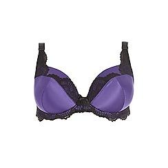 Evans - Gia purple plunge bra