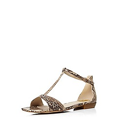 Evans - Extra wide fit brown snake print square toe sandal