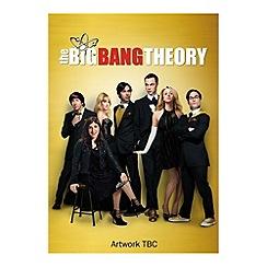 DVD - Big Bang Theory   Complete Series 7 DVD