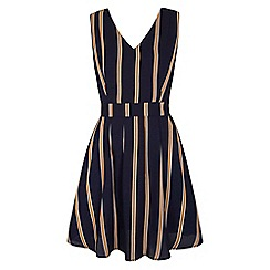 Yumi - Blue Vertical Stripe Skater Dress