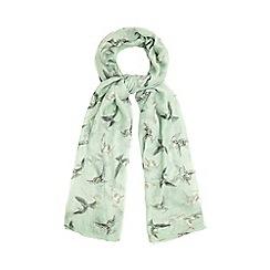 Yumi - Green Bird Print Scarf