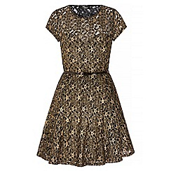 Iska - Gold gold lace skater dress