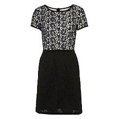 Uttam Boutique - Navy Two-tone lace dress