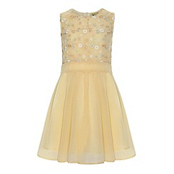 Yumi Girl - Embroidered bodice skater dress.