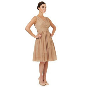 Ariella London Light gold 'Gracie' bridesmaid dress